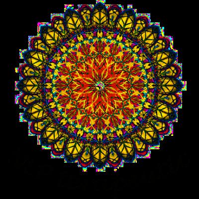 Ștefan Sandu Logo