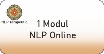 un modul nlp online