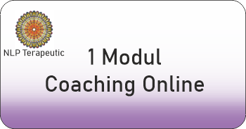 un modul coaching online