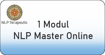 un modul nlp master online